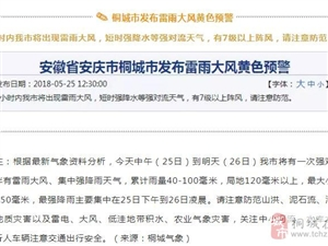 最新桐城天气:6小时内桐城将出现雷雨大风,有7级以上阵风!