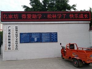 广汉市名家坊微友联盟汇爱心团队六一前夕关心关爱松林学校贫困留守儿童