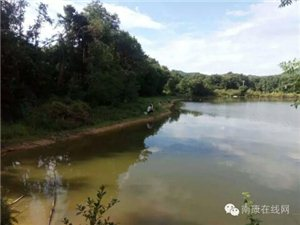 2018龙回坪沙三口塘垂钓区钓鱼活动
