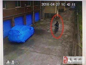 技�g�_�i偷�`,遂川警方抓到�@���\!