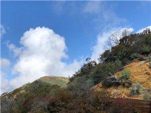 看云海 、、、