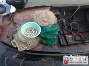 湖口7名非法捕捞人员涉案数10起,被依法取保候审!
