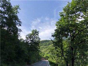 六一暑期带娃度假地:住野三坡山谷里的美宿,过一个宫崎骏的夏