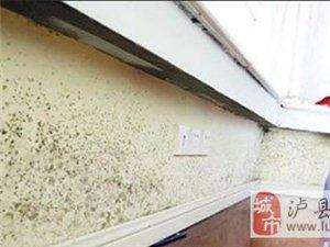 泸县装修知识掉墙皮的墙面怎么处理