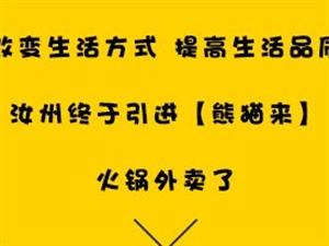 奔走相告!网红火锅外卖【熊猫来】强势入驻汝州