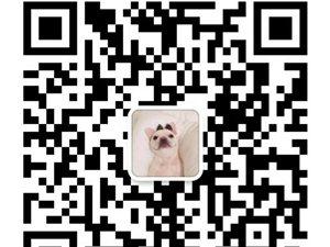 【盘锦在线便民信息】第11期(2018.6.4)