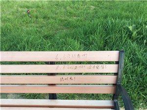 """在长椅上写字的那位""""高素质朋友"""",德令哈人民喊你搽椅子去呢"""