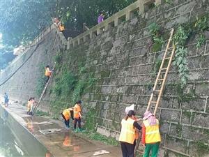 第十五届长宁蜀南竹海龙舟节要到了,最辛苦的还有这群人......