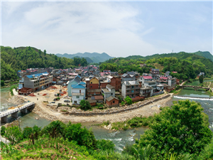 苏庄镇苏庄村