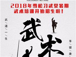 2018年雪松习武堂暑期武术培训开始招生啦!