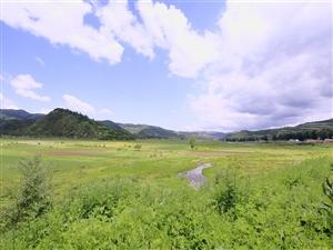 6月9日,中国大关山摄影俱乐部开展第20次摄影采风活动,走进关山小麦积