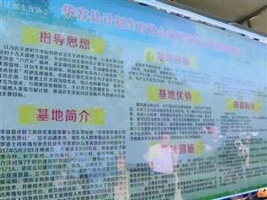 白尊贤率调研组来华容县调研基层计生协会工作