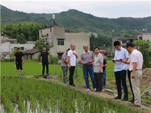 市水务局来我县督办农田水利和水土保持等重点工作