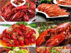 新东方美食狂欢节激情来袭,嗨翻假期!