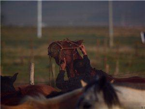 张建民:马队迎亲