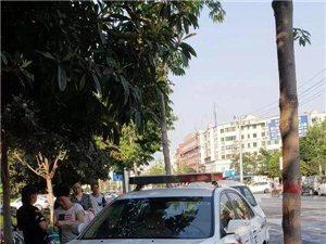 平顶山牌照警车冲上人行道占压盲道 被漯河网友曝光