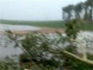 2018年6月15日巴彦县万发镇遭受暴雨袭击