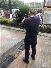 汉台城区凌晨闯入一头野猪被巡特警民警击毙