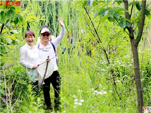 蓝天34人穿越南北沟的舒心与惬意