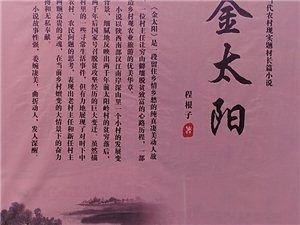 程根子《金太阳》发布会诗二首――《汉江文艺》签约作家王正荣原创