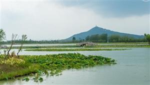 仙山湖650亩荷花绽放游客闻香而来