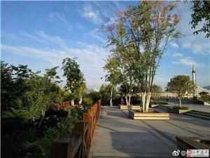 雨后天晴,清新美好,今天宜汉江河边行走