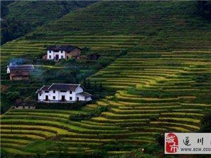 旅游攻略:中国最美梯田之乡――遂川梯田