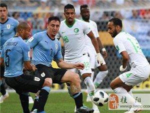 世界杯A组最新积分榜,埃及沙特无缘16强