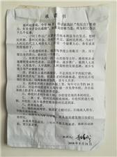 焦作:村委会选举伤透村民心