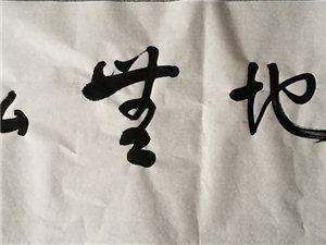 陈振玉书画作品欣赏
