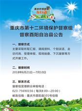重庆市第十二环境保护督察组督察酉阳自治县公告
