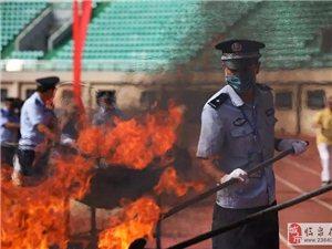 现场震撼:昨天,297公斤毒品在临泉被当场焚烧!