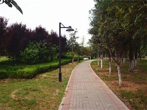 2018通许文化广场