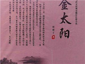 旬阳乡土作家程根子长篇小说《金太阳》故事梗概