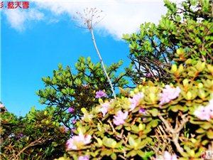漫步石海云海触摸仙境的51蓝天人