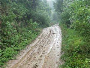 家乡的土路何时才能变成水泥路