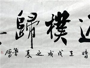 【书法鉴赏】鲁雁书法作品展(二)