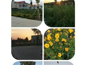 冯家庄村的乡村生活