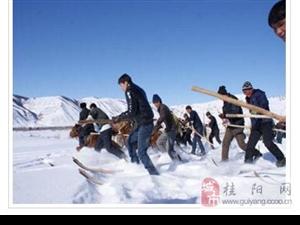 中国最冷十大城市在哪?