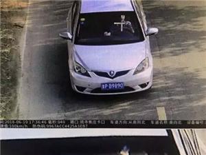 【法网恢恢】610肇事司机回来自首了,真相在这里!
