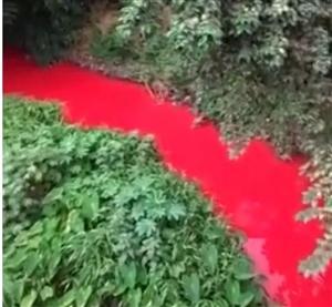 宜宾惊现血红河流,环保部门第一时间进行调查,附视频!