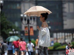 抵御烈日可能只需要一把遮阳伞
