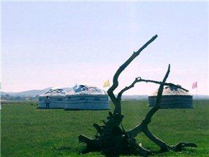 草原情――牧人之家旅游区欢迎您!联系电话15164974653