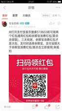 """关于论坛网友""""龙哥""""狂刷回复支付宝扫码的第一次警告!"""
