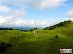【大美张家川】航拍山青水秀的大美关山