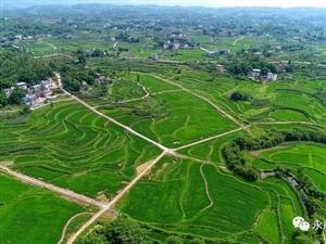 航拍永川乡村美景,像画一样!