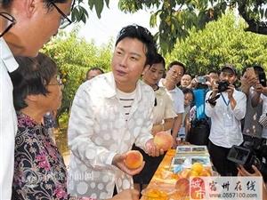 """摘黄桃、品酥梨、听戏曲 歌手李玉刚为砀山""""代言"""""""