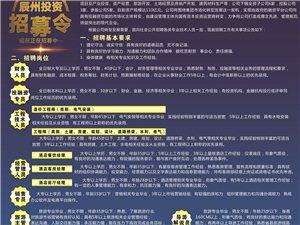 沅陵辰州投资集团有限公司招聘公告