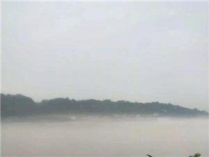 今早的长江
