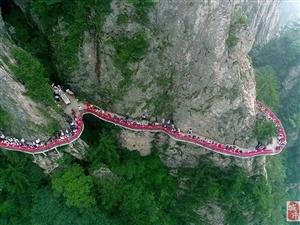 老君山真会玩!海拔2000多米摆云海盛宴供游客免费吃!